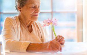 aging alone plan
